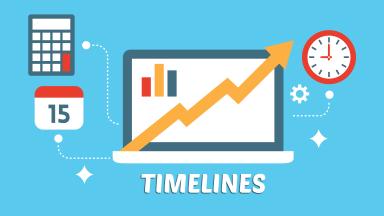 New Website Timeline